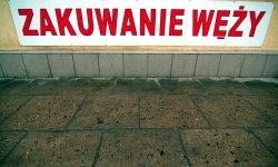 expo, photography, Poland, Wojciech Gepner, Polish